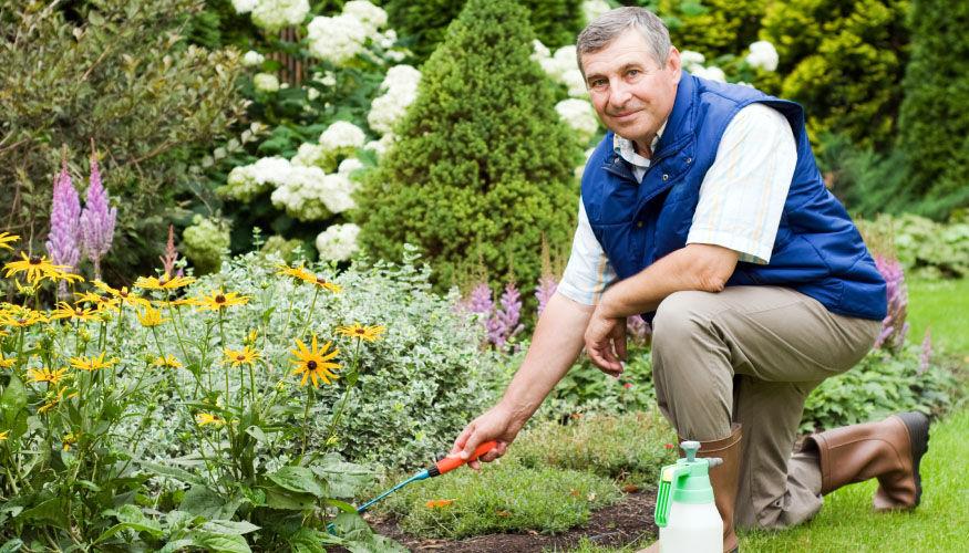 Bahçe Düzenleme