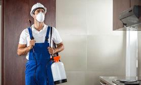 pest fare  ev  servisi bahce  servisleri  kontrol  hizmetleri  sivrisinek  karinca  karafatma bina villa hastane okul restoran kurum