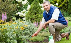 Najpopularniejsza usługa w tym tygodniu Ogrodnictwo.
