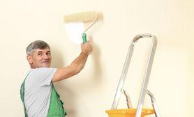 Najpopularniejsza usługa w tym tygodniu Malowanie.